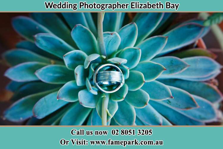 The wedding Ring Elizabeth Bay NSW 2011